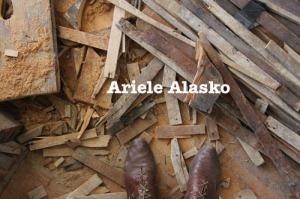 Ariele Alasko