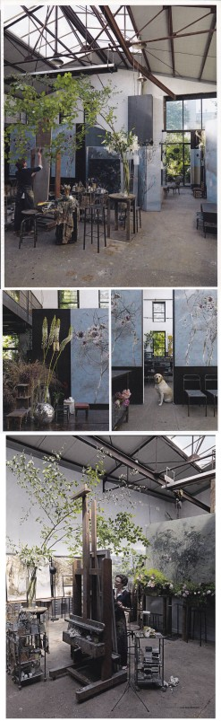 Clare Basler, Flower Portraits, Paris Workshop