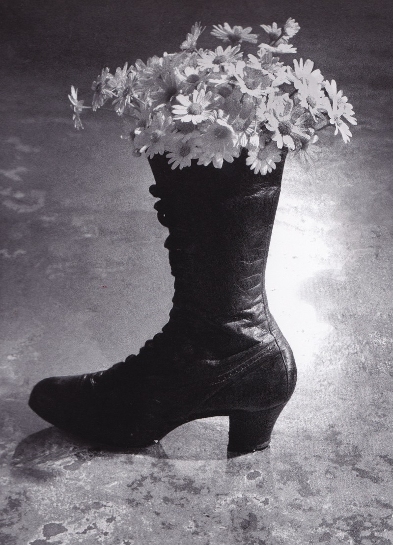 Sam Haskins, Cowboy Kate and other stories, showgirl boots and flowers