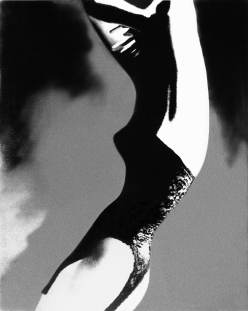 Lillian Bassman, Black basque, Lingerie